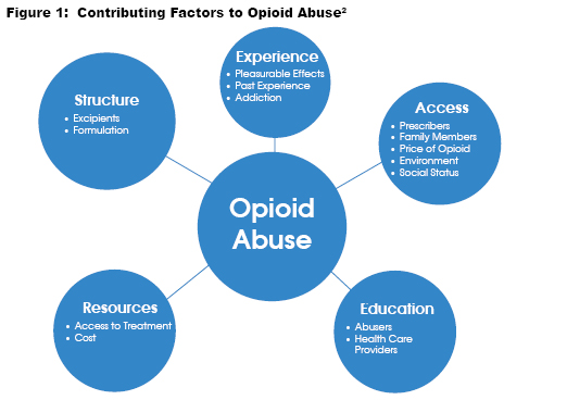 Figure 1: Contributing Factors to Opioid Abuse (2)